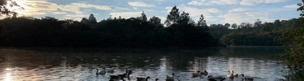 lagoa patos